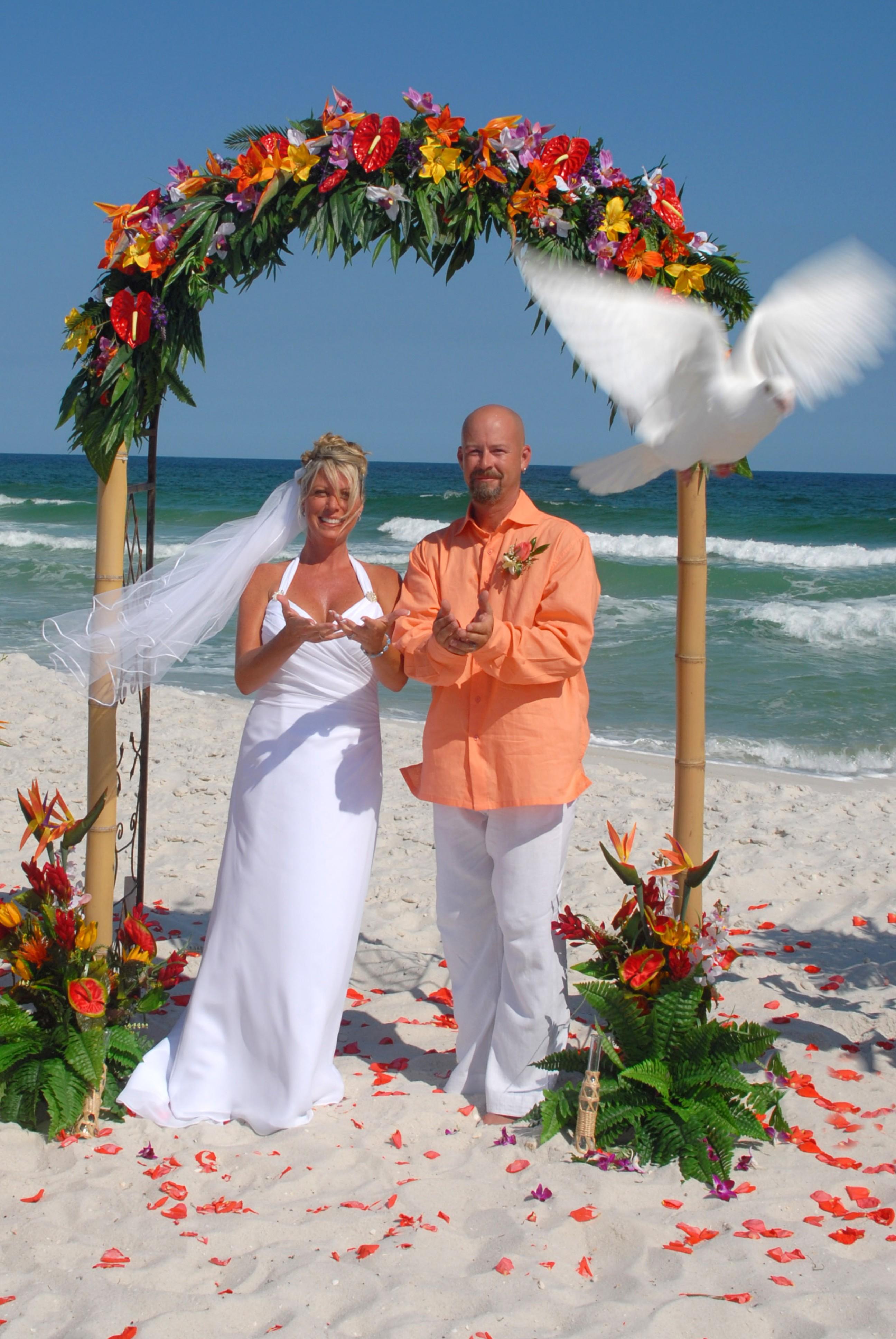 Barefoot Weddings® Blog